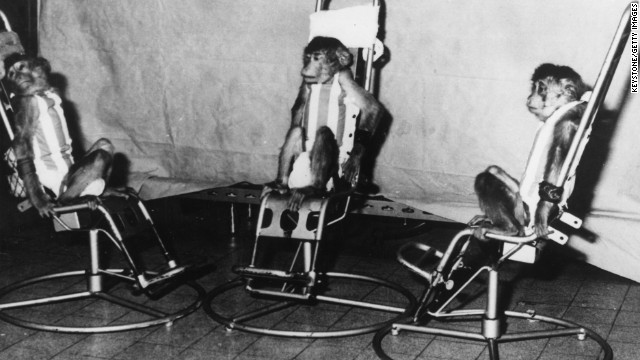Some of the first space monkeys were trained at Sochi. Lucky them.
