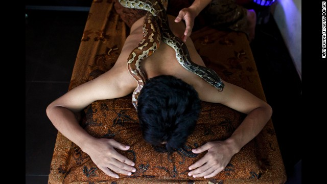 Snakes move across a man's back at the spa.