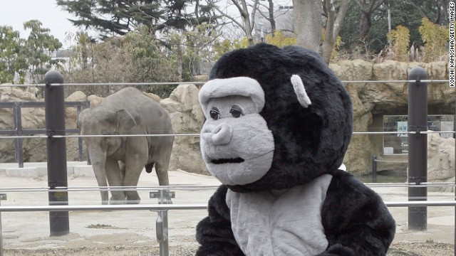 """I tried to feel what an animal might feel and realized when they were on the run they would be scared,"" said zookeeper Natsumi Uno, who wore the costume."