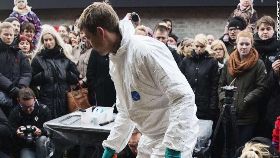 Zoológico danés sacrifica a una jirafa sana