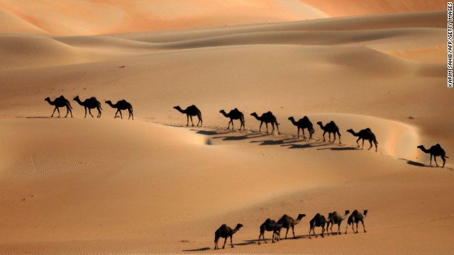 Will camel discovery break the Bible's back?