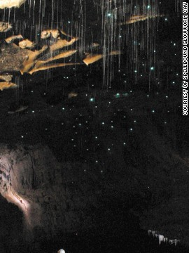 Take a boat ride to explore caves filled with New Zealand's indigenous glowworms. Their blue glow is caused by a chemical reaction in their abdomens.
