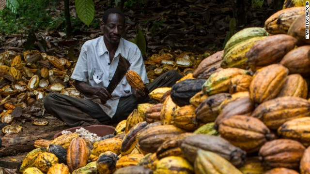 Cocoa-nomics: Faces of the cocoa industry
