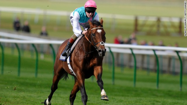 Tom Queally rode Frankel to 14 wins in 14 races during an illustrious career, and likens him to the very best in any walk of life.