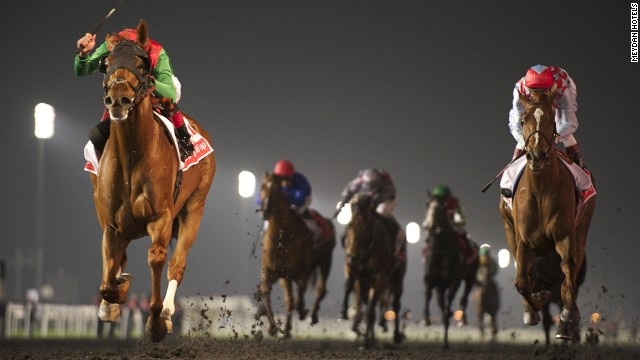 American thoroughbred Animal Kingdom, the 2011 Kentucky Derby champion, was the winner of last year's big race in Dubai.