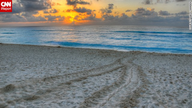 a href='http://ireport.cnn.com/docs/DOC-1078686'Matt Swinden/a captured turtle tracks in the sand at sunrise on a Cancun beach.