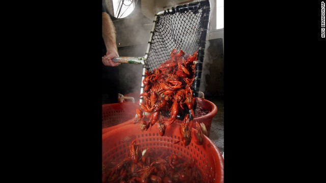 Collect a pile of napkins if you head to the Big Fisherman on your visit. You'll need them. Check out this freshly boiled crawfish being poured into a bin at the store.