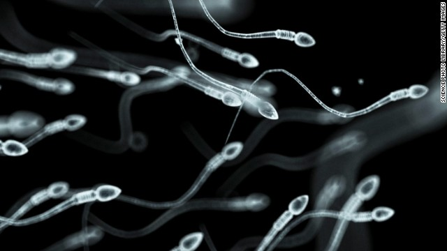 Common chemicals challenge sperm