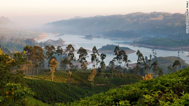 Tea draws tourists to a country steeped in tradition