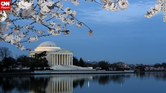 The cherry blossom season can last as long as 25 days.