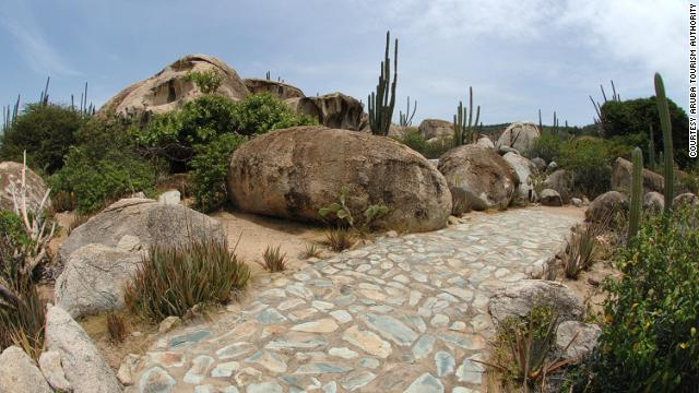 This is what most of Aruba would have looked like in the 1800s -- a desert wilderness of abandoned gold mines, massive cacti, wandering goats, limestone caves and the odd mud-and-grass farmhouse.