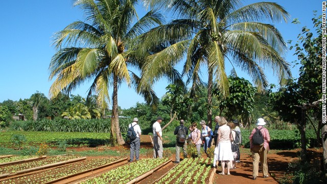 You could find yourself taking in a traditional hog roast with a Cuban farming family, touring the orchards of fruit farmers in Ciego de Avila or chatting with workers at the sharp end of the Cuban economy.