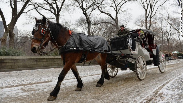 New Yorkers to de Blasio: Keep the horses
