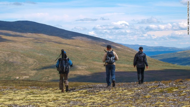 Norway is the second-happiest country in the world. Hike through Dovrefjell National Park to see arctic musk oxen and (possibly) reindeer.