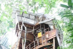 Casa del árbol Nido de Lapa, Costa Rica