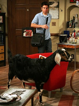 One day, Ted walked into his apartment and found a goat. The explanation of this was held for several episodes, until we learned that Lily rescued the goat from a farmer in her classroom.