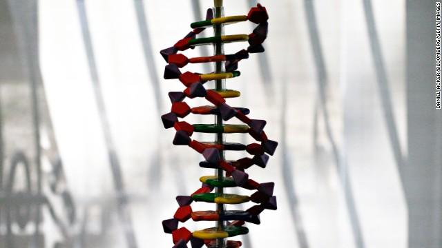 Cromosoma diseñado