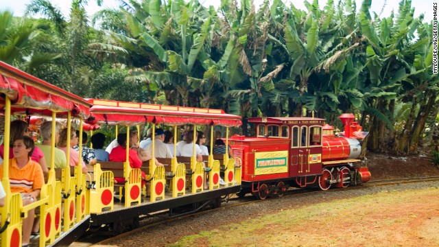 Pineapple Express train rides are available at the <a href='http://www.dole-plantation.com' target='_blank'>Dole Plantation </a>in Wahiawa, on Oahu.