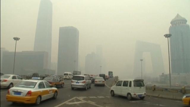 ¿Quieren ciudades verdes? Olvídense de sus coches
