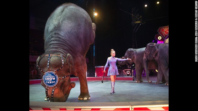 Carol the elephant performs Thursday in Tupelo, Mississippi, a year after she was shot and wounded there.