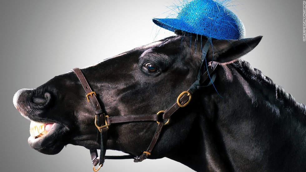 Just because you're wearing a hat worth hundreds of dollars, doesn't mean you can't horse around. Milliner-to-the-royals, <a href='http://www.rosieoliviamillinery.com/' target='_blank'>Rosie Olivia</a>, is better used to creating elegant head wear for Britain's Catherine, Duchess of Cambridge, her sister Pippa Middleton, and Princess Beatrice. This, however, was something entirely different ...