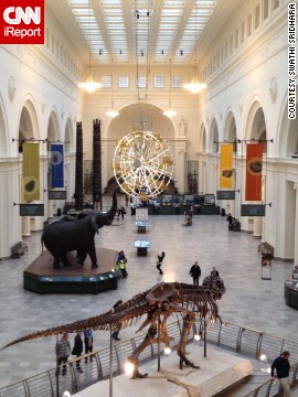 The Field Museum holds a special place in Sridhara's heart because it's where her fiance proposed. Click the double arrow to see more photos.