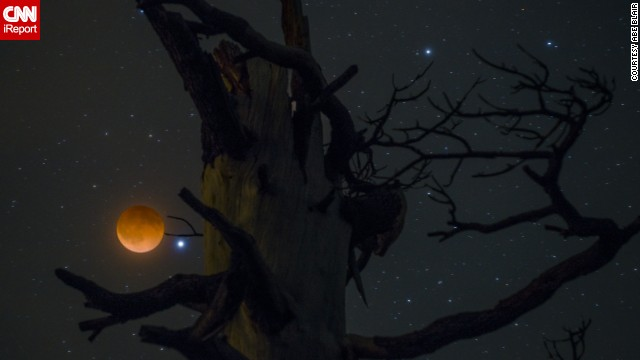 "<a href='http://ireport.cnn.com/docs/DOC-1120903'>Abe Blair</a> says it was cloudy when he got up to take pictures of the blood moon, but he decided to try anyway. ""I am glad I trusted my gut feeling,"" he said. Blair had picked this tree out earlier in the day, but he had to hike for about 15 minutes in the dark to get there. He shot a two-second exposure for the moon and a 20-second exposure of the tree, and then combined the images in Photoshop."