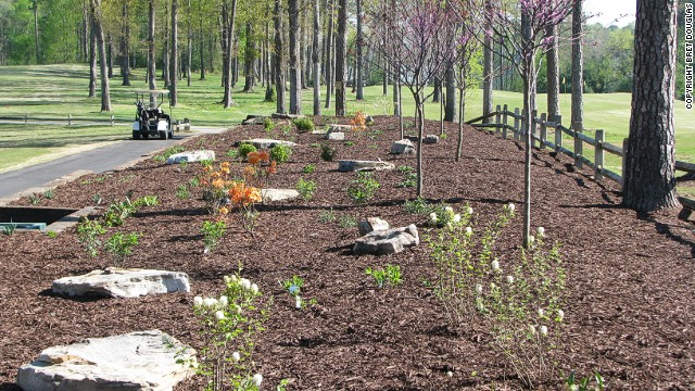 The club has also introduced native planting beds. Carter has been recognized for his environmental efforts with several awards in recent years, including the 2013 Environmental Leaders in Golf Award. <!-- --> </br>
