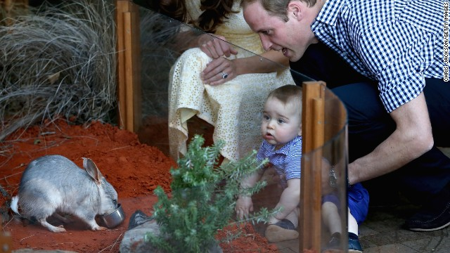 The little prince meets an Australian marsupial.
