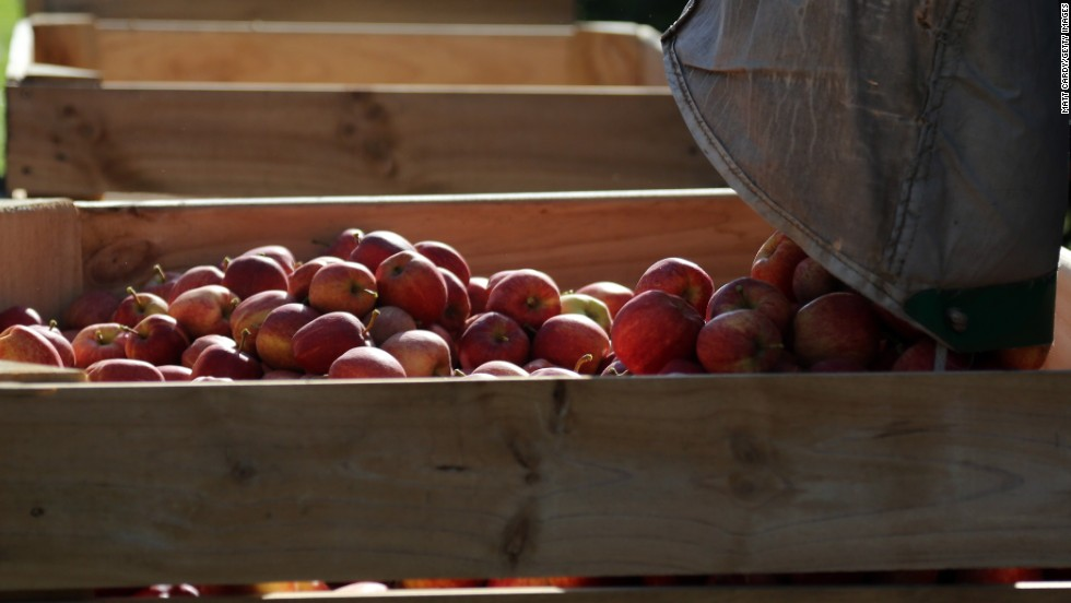 "Every year, the Environmental Working Group publishes its ""<a href='http://www.ewg.org/foodnews/list.php' target='_blank'>Dirty Dozen</a>"" list, naming the fruits and vegetables ranking highest in pesticide residue. In 2014, apples retained the No. 1 spot for the most pesticide-contaminating produce for the fourth year in a row."