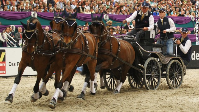 DRIVING: Riders sit on a vehicle drawn by a single horse, a pair, or a team of four, which face three trials -- dressage, marathon and obstacle driving. Given that horses were driven long before they were ridden, they've had many years of practice for this event.