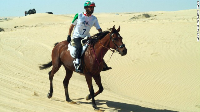 ENDURANCE: Endurance tests the speed and endurance of a horse as well as its ability to cross different kinds of terrain. Although a long-distance competition against the clock, the emphasis is on finishing in a good condition rather than finishing first, making it a real survival of the fittest.