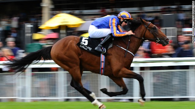Great White Eagle, seen here at the Go And Go Round Tower Stakes at Curragh racecourse in Kildare, Ireland, was also snapped up at the Craven Sale.