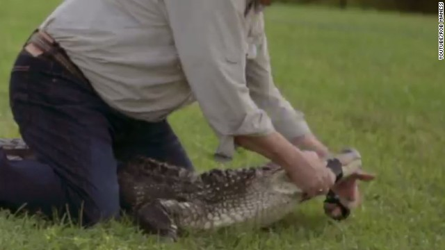 Alligator-wrestling Louisiana Senate candidate gets Palin backing