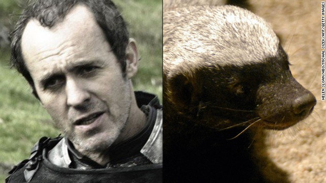 "<strong>Stannis Baratheon / Honey Badger:</strong> The show is filled with foul, charismatic and clever characters, but Stannis is singular in his drab, relentless thirst for power. The dour, wanna-be king has the ""personality of a lobster,"" but few can match his pugnaciousness. He's even willing to battle his brother and embrace religious fundamentalism to get the iron throne. Like Honey Badger, that squat, unstoppable predator made famous by a viral video, Stannis ""don't give a s***."""