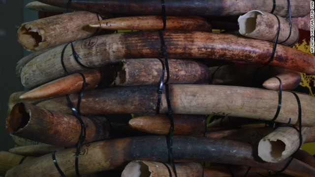 Hong Kong has started burning over 28 tons of seized ivory, a process that will take more than one year.