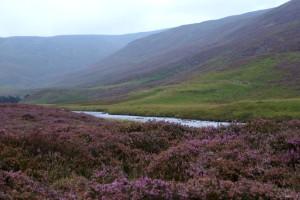 Parque Nacional Cairngorms, Escocia