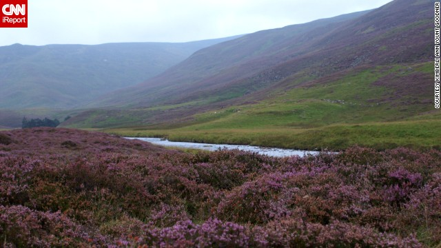 "<a href='http://cairngorms.co.uk/' target='_blank'>Cairngorms National Park</a> is the largest park in the British Isles. <a href='http://ireport.cnn.com/docs/DOC-1129437'>Kimberli Ann Yount Goodner</a> says you can hike through the whole park. She says one thing to keep an eye out for is a large stone on the side of a hill that reads, ""Take a moment to behold, as still skies or storms unfold, in sun rain sleet or snow, warm your soul before you go."""