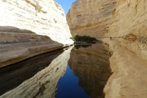 Parque Nacional de Ein Avdat, Israel