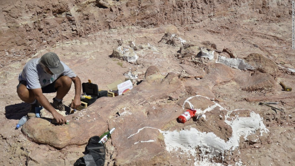 Descubren un dinosauro gigante en Argentina