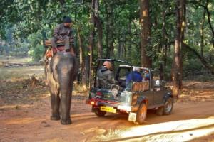Parque Nacional de Bandhavgarh, India