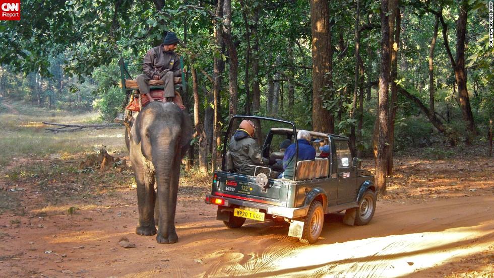 Bandhavgarh India  city photos gallery : Parque Nacional de Bandhavgarh, India