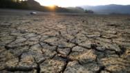 Estamos en punto clave del cambio climático