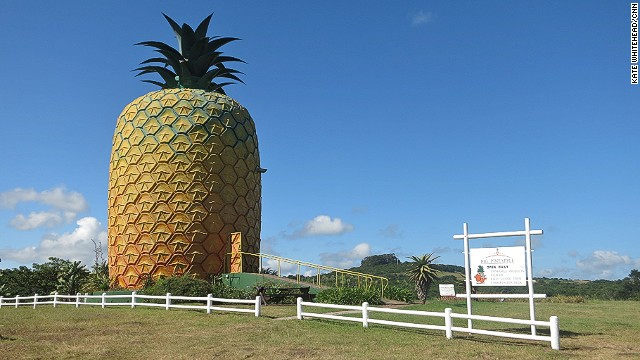 Among a number of eccentric venues in Bathurst, the 17-meter-tall Big Pineapple museum offers farm tours and pineapple tastings.