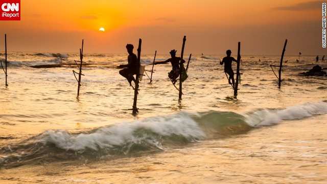 How long can they stay like that? Stilt fishermen balance themselves on poles in Colombo, Sri Lanka, at sunset to get their catch.