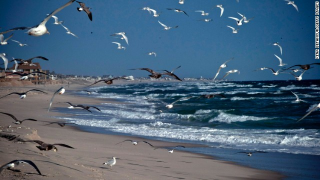 Seagulls fly along the beach in Seaside Heights, New Jersey, a year after Superstorm Sandy damaged the coastal areas in October 2012.
