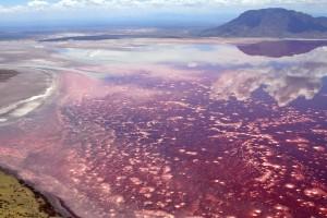 Lago Natron, Tanzania