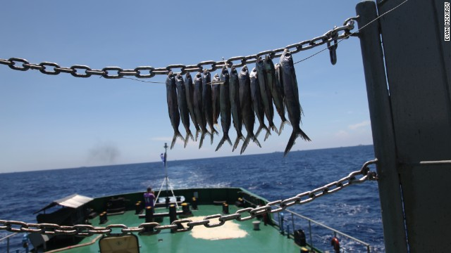 Fish dry in the hot sun aboard the Coast Guard vessel.