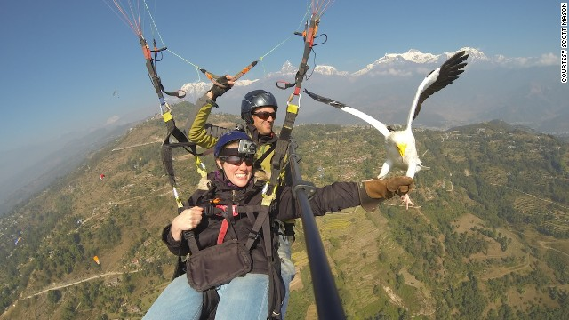 Keep a tight fist on that buffalo meat and try not to worry about the ride. The Parahawking Project says its pilots are internationally licensed and insured.