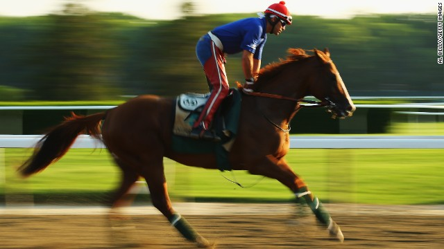 The three-year-old is bidding to become the first horse since 1978 to win the prestigious Triple Crown.
